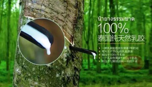 那些所谓的乳胶床垫从泰国直邮,就一定是真的吗?