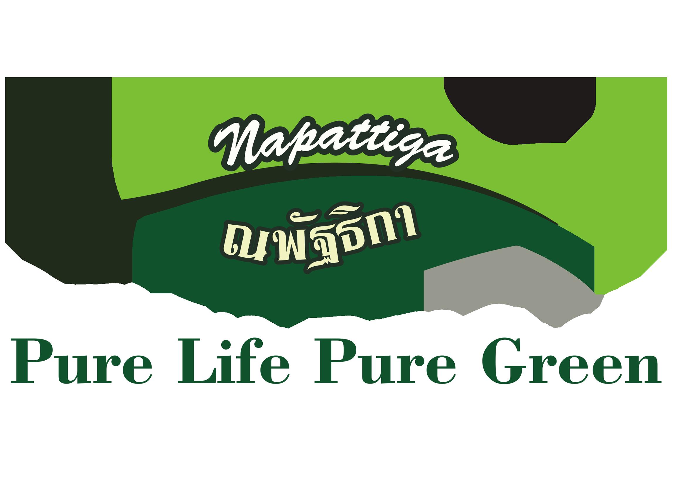 Napattiga推出创新乳胶负离子文胸 带来柔软舒适、健康的乳胶内衣概念