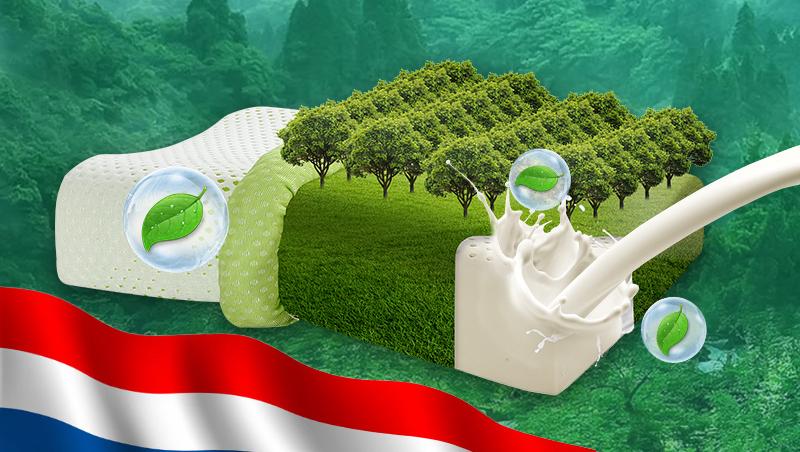 一位泰国Napattiga乳胶枕代理的亲身经历